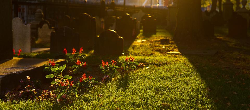 Grabsteine auf Friedhof im Gegenlicht